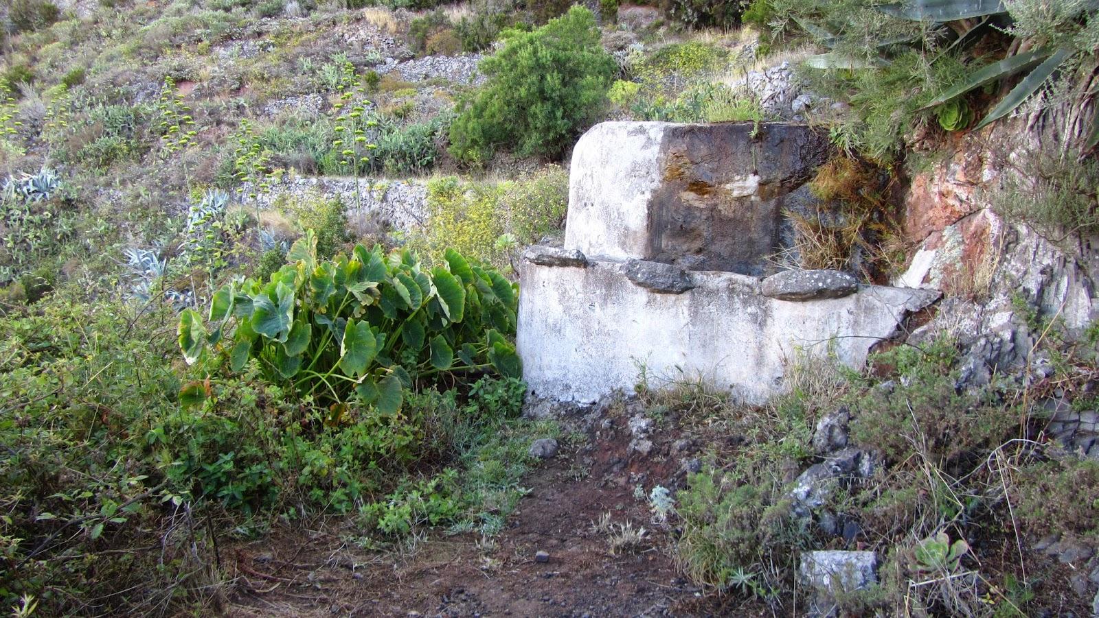 mis senderos canarios ruta ocho valleseco taborno por