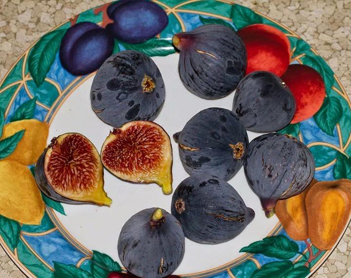 i hate figs