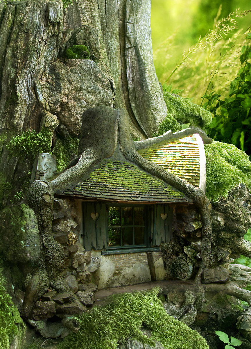 Tree House In The Forest Most Beautiful