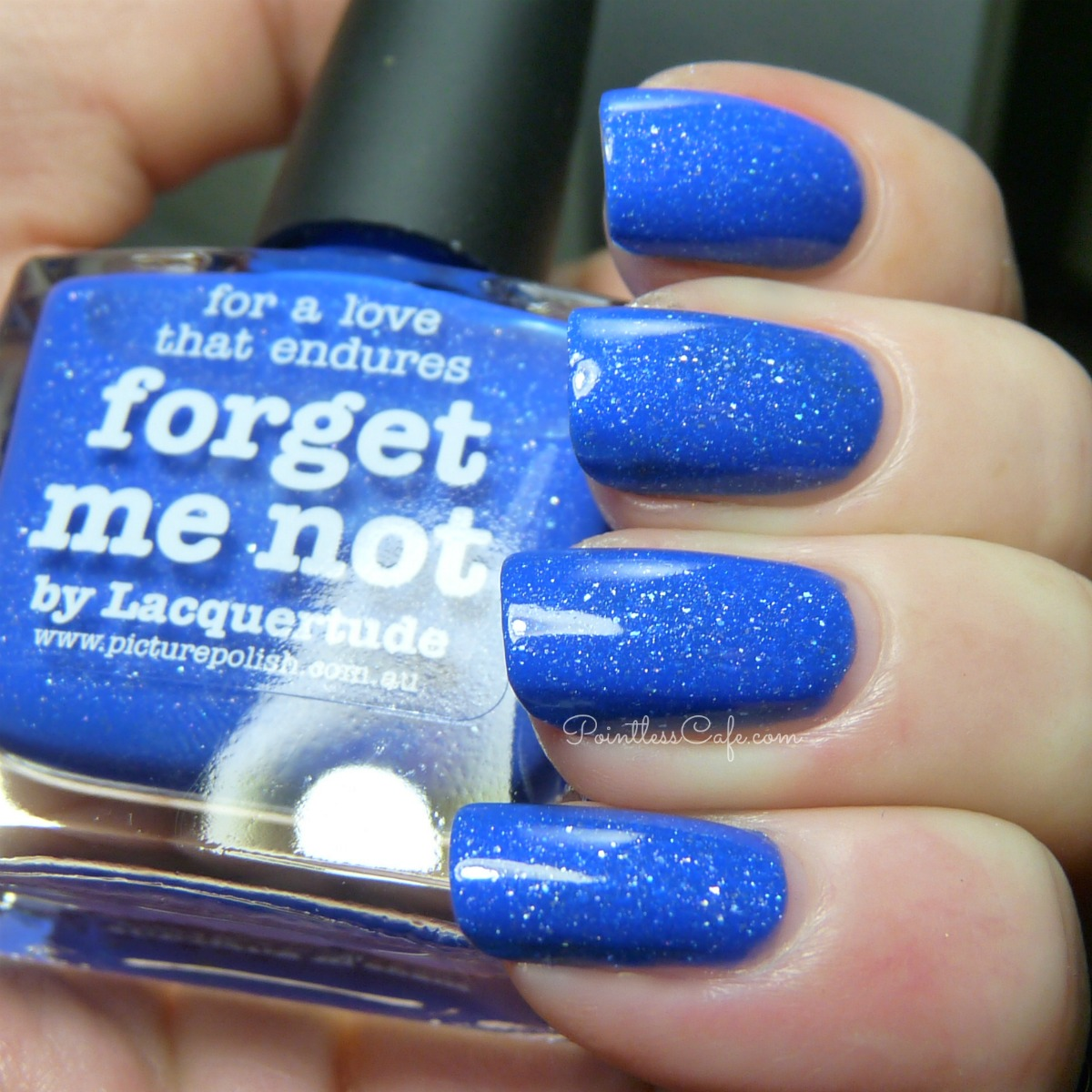 picture-polish-forget-me-not
