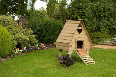 Hobby Hen House off to Designers at RHS Show 2013