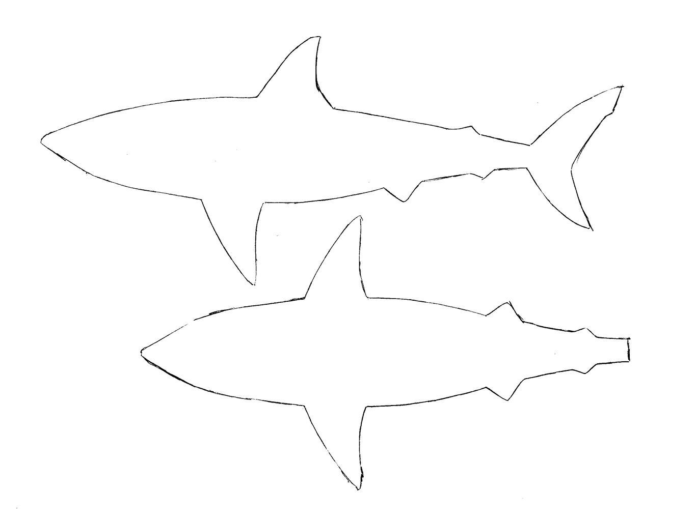Universal image within printable shark template