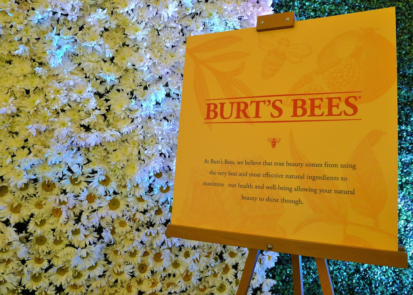 burt's bee's leaving the hive Join our hive get exclusive deals thank you for joining the burt's bees baby community burt's bees baby.