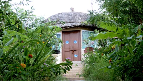 Unique Piplantri Village Plants 111 Trees For Every Girl Child