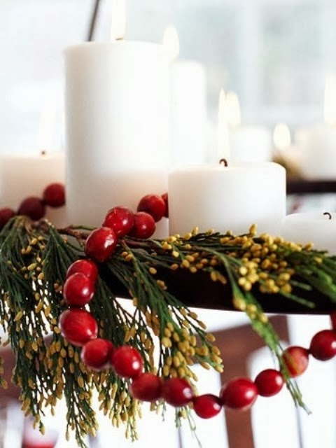 Outside Christmas Lights Decorating Ideas