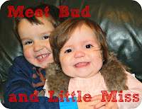 Meet Bud and Little Miss