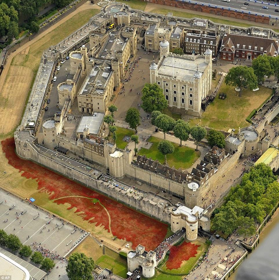 tour  Londres, centenaire ,guerre mondiale, first war, duchess,duke,katt, william, coquelicots faiences