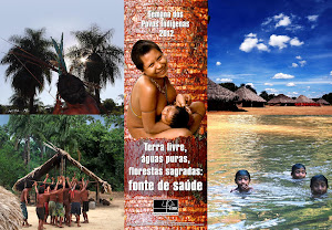 Rio+Terra Livre dos Povos Indígenas