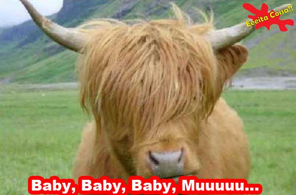 Justin Bieber, novo visual, touro, vaca, eeeita coisa