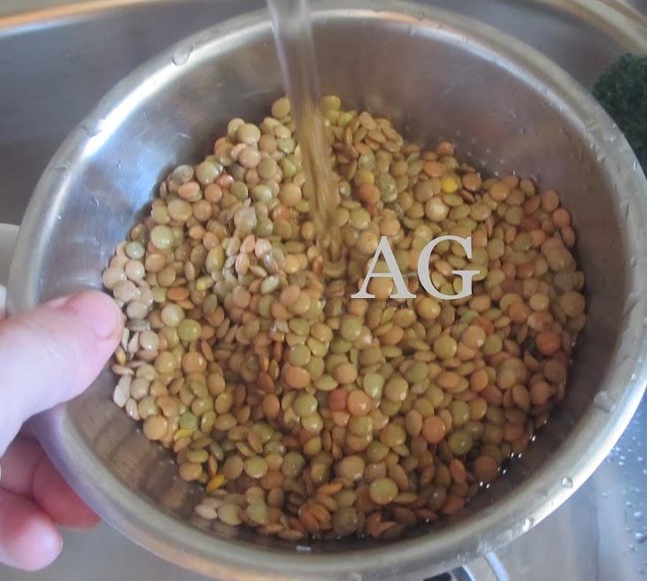 Gusto di casa mia pasta e lenticchie for Lenticchie d acqua