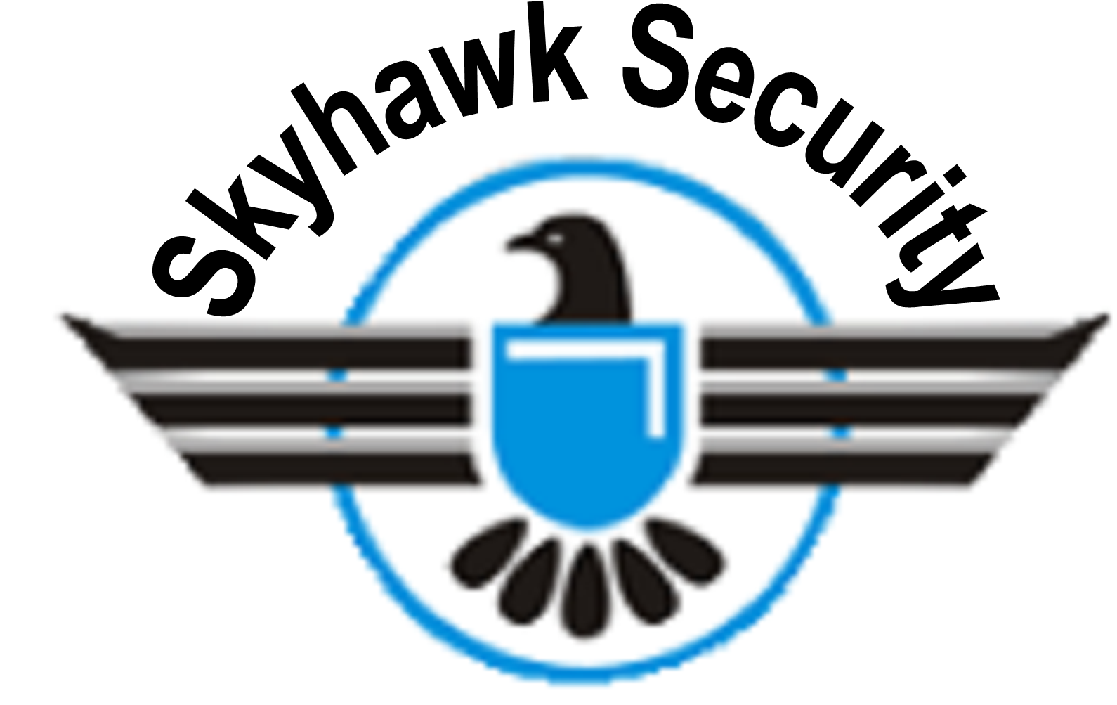 Skyhawk Security