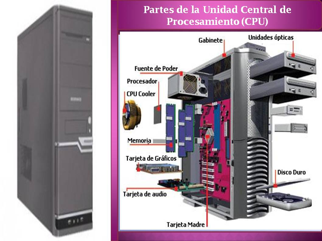unidad central de procesamiento(CPU)