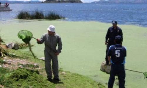 Contaminación en el lago Titicaca