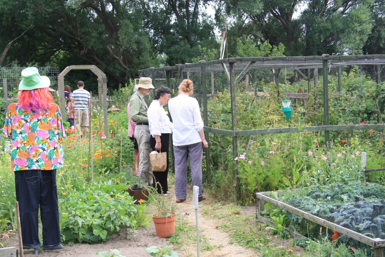 1000 images about allotments on pinterest allotment for Garden allotment ideas
