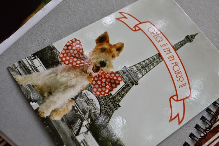 postcard, Paris, France, dog, chien, pes, pohled