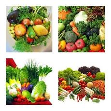 daftar Benih Sayuran