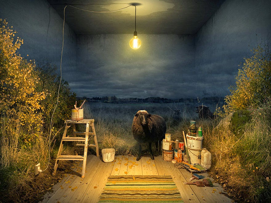 optical illusions manipulations erik johansson-7