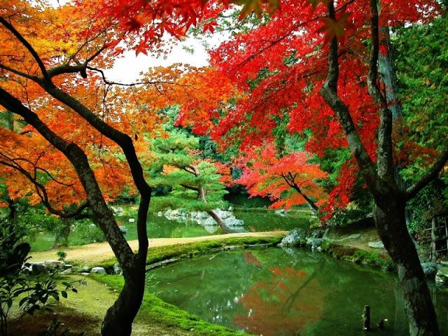 Anh+dep+Boxgiaitri 037 Hình nền máy tính: Chủ đề Ảnh đẹp thiên nhiên