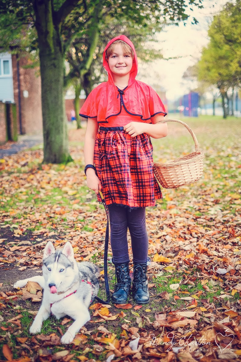 red riding hood and the wolf halloween costume, dressing up, husky