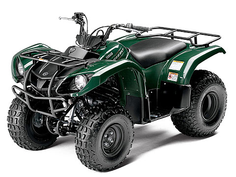 2013 Yamaha Grizzly 125 Automatic ATV pictures. 480x360 pixels
