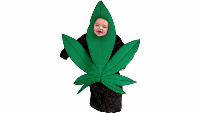 Marijuana Halloween Costume. Your kid will be the hit of the party in this sweet little ensemble. What would make this costume SUPER cool is if there was ...  sc 1 st  Questionable Parenting & Questionable Parenting: Top 10 Questionable Baby Gifts: The Weird ...