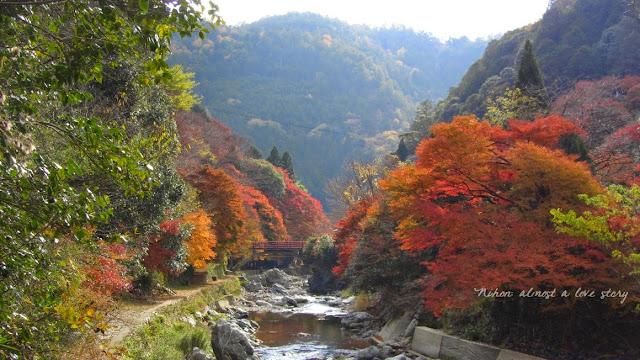 Kyotaki
