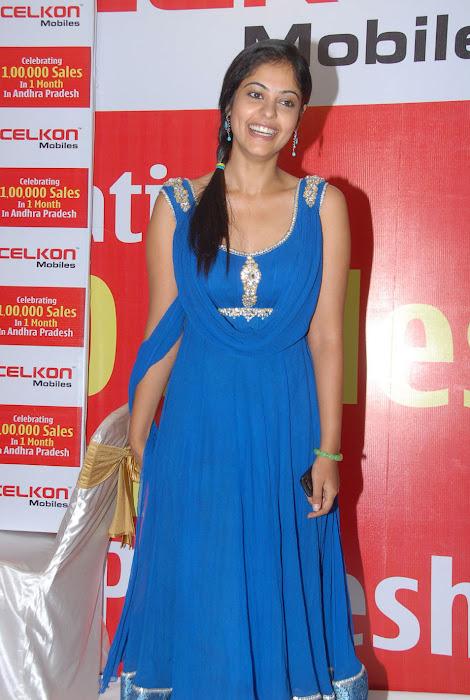 bindhu madhavi at celkon mobile successmeet, bindhu madhavi actress pics