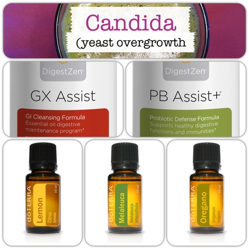 Oils on pinterest essential oils doterra and doterra essential oils