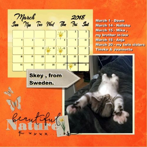 Nelleke's March 2018 calendar