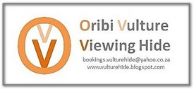 Oribi Vulture Viewing Hide