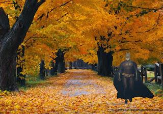 Batman Desktop Wallpapers Batman Dark Knight Ready to Fight at Autumn Trees Desktop wallpaper