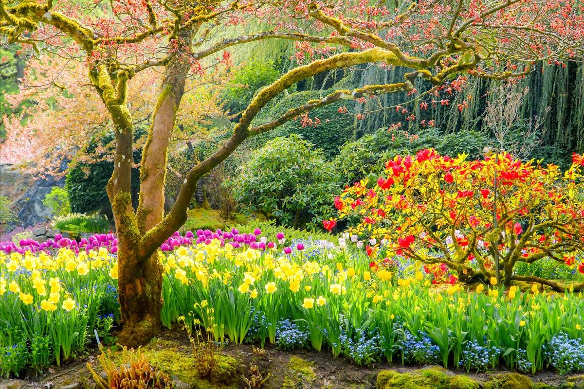Imagenes ethel imagenes hermosos paisajes de rep for Jardines naturales