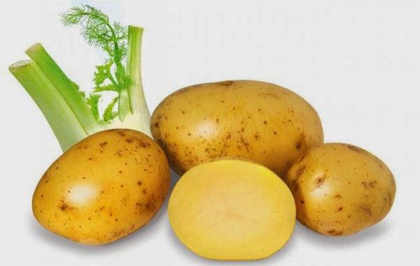 Cách trị mụn cám hiệu quả nhất từ khoai tây