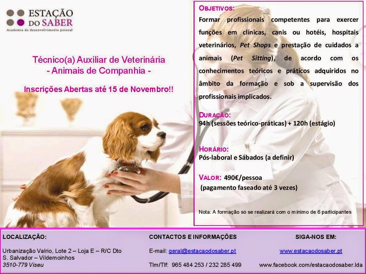 Curso de Técnico Auxiliar de Veterinária (Animas de Companhia) – Viseu