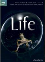 Mamíferos - Life