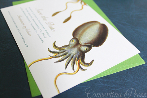 Cuttlefish Save the Date by Concertina Press