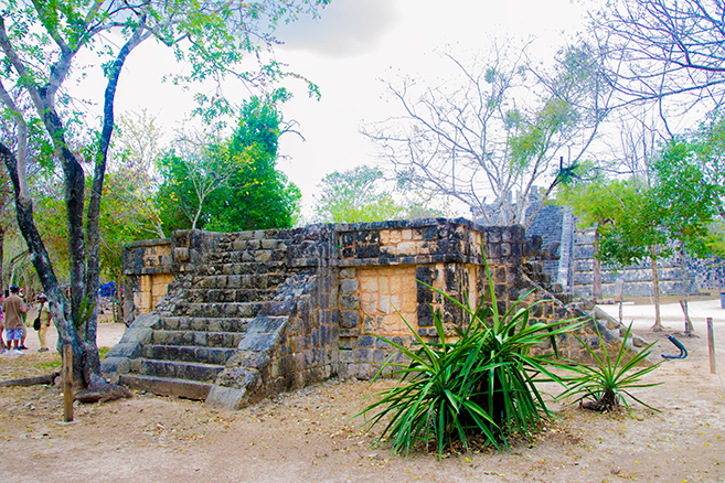 Chichen Itza x Wildlife x Playa del Carmen