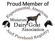 Mini Dairy Goat Association