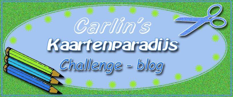 Carlin's Challenge Blog