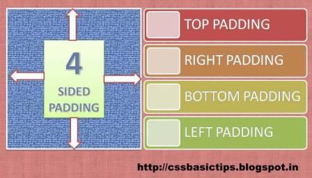 What is padding and How to set padding in CSS?