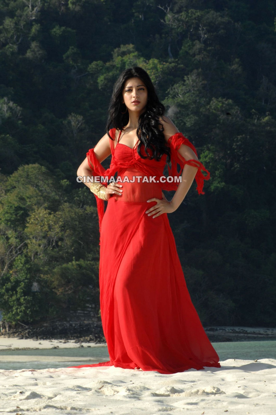 Shruti Haasan1 - Beautiful Shruti Haasan 7Aum Arivu Red hot Stills