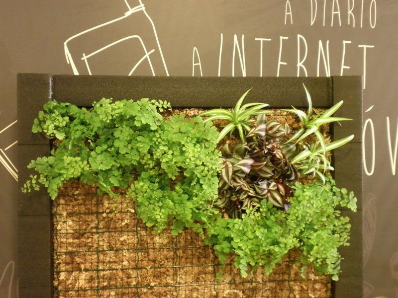 Jardines verticales y cubiertas vegetales octubre 2013 for Jardines verticales mexico