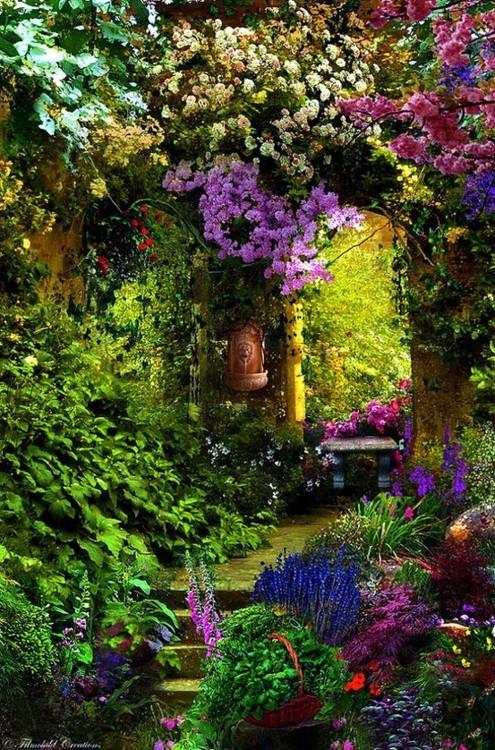 flor azul jardim secreto:Jardim Secreto Atelier