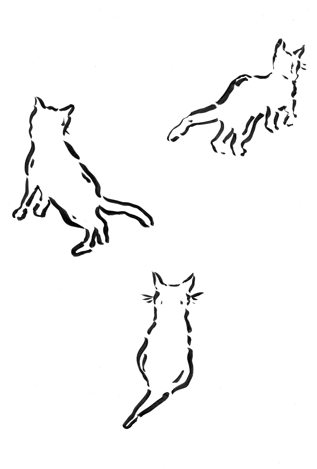 Cat Outline Template