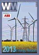2013 Energy Report