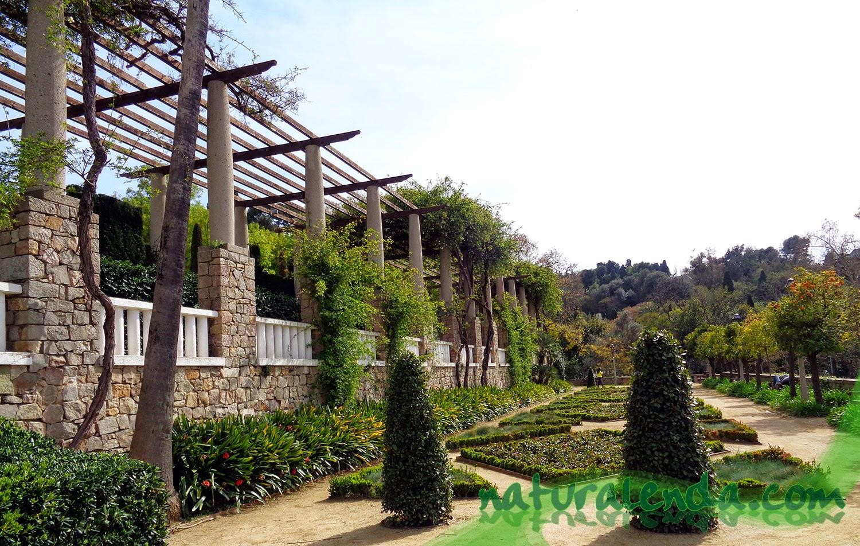 La naturaleza en casa los jardines del teatro griego for Jardines laribal