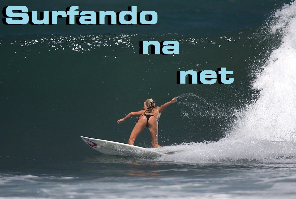 SURFANDO NA NET