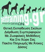 pettraining.gr