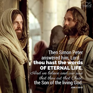 Then Simon Peter answered him, Lord…thou hast the words of eternal life. And we believe and are sure that thou art that Christ, the Son of the living God. John 6:68-69
