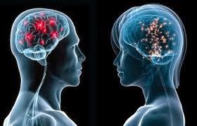 Las mujeres tienen mas memoria y ellos se orientan mejor según un estudio